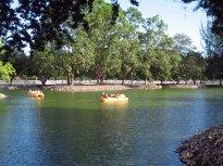 Monagas Park pond